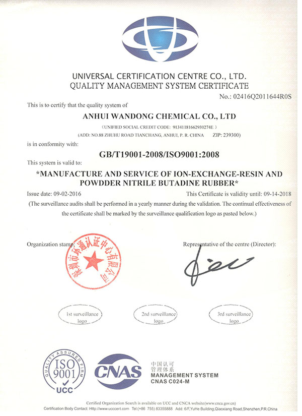 ISO9001 Quality Management System English